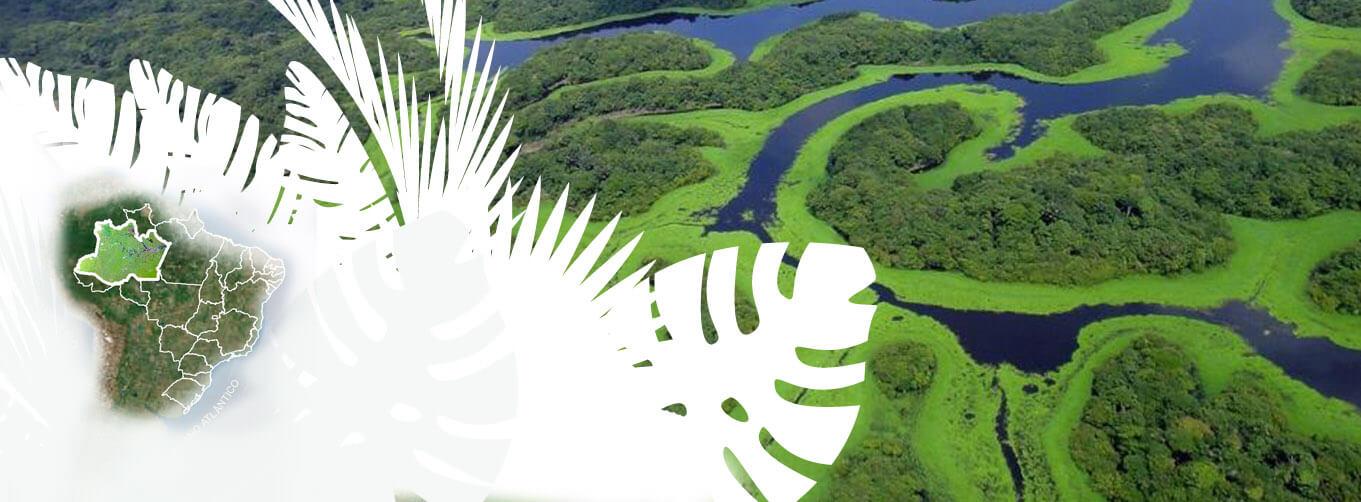 slide-amazonia